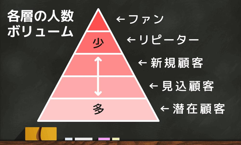 ピラミッド型分析による人数ボリューム